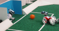 A Sony Aibo soccer-playing robot shoots for a goal
