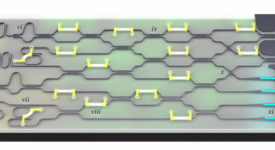 Mock-up of a quantum photonic device, which could form part of a neuromorphic computing system. From Silverstone et al., IEEE J. Sel. Top. Quantum Electron. 22, 6 (2016). Licensed under a Creative Commons Attribution 3.0 License.
