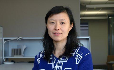 Professor Lili Qiu