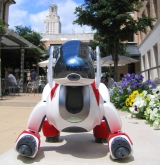Aibo with tower and flowers