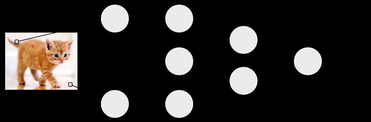 a neural network sketch